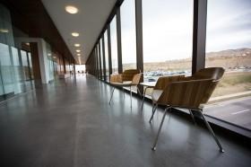 Sedie Ikea in Legno