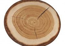 Tappeto Rotondo Moderno con Tronco d'albero
