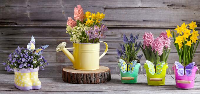 Vasi da esterno di stile e funzionali homehome for Vasi da giardino in plastica