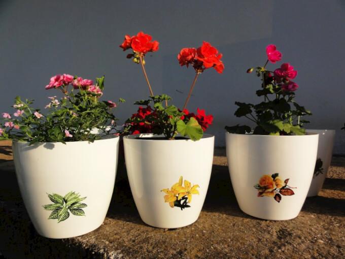 Vasi per piante: come impreziosire la casa homehome